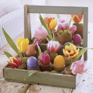 eggs-trugs-pots-flowers-xl