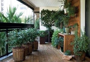 302605-Aprenda-a-transformar-varanda-em-jardim-1
