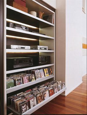 organize-seus-cds-06