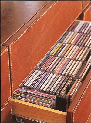 organize-seus-cds-11