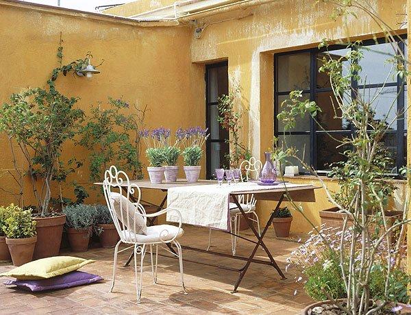 ideias para montar um jardim no quintal espaço tá ficando super