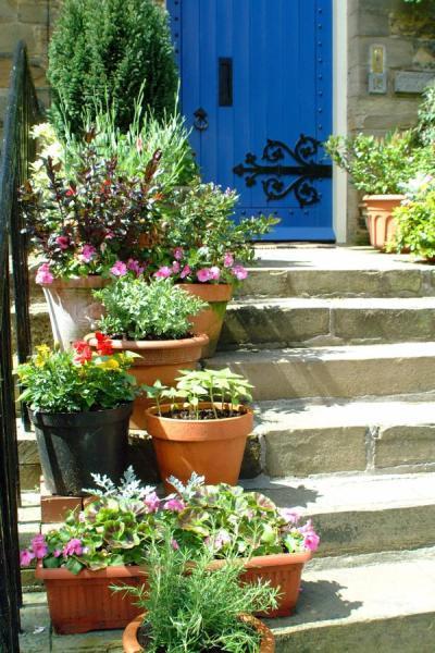 jardim-pequeno-vasos