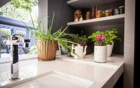 plantas-na-cozinha