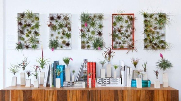 algunas-ideas-para-decorar-con-plantas-aereas-01-1024x576_677283